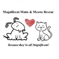 Magnificent Mutts Rescue