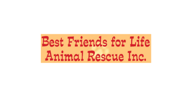 Best friends for life animal rescue