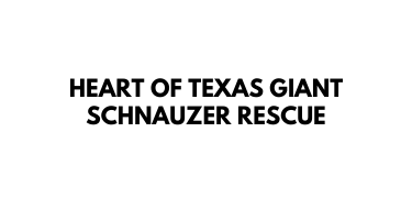 Heart of Texas Giant Schnauzer Rescue