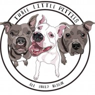 Three Little Pitties All Breed Rescue