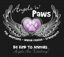Angels 'n' Paws