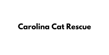 Carolina Cat Rescue