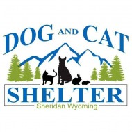 Dog and Cat Shelter