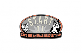 Save the Animals Rescue Team II