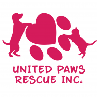 United Paws Rescue