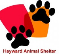 Hayward Animal Shelter