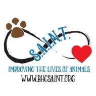 Saving Animals In Need Together