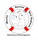 Westie Rescue of New England Inc
