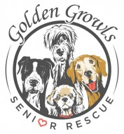 Golden Growls Senior Rescue