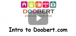 Intro to Doobert.com