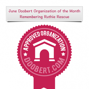 June Doobert Organization of the Month - Remembering Ruthie Rescue
