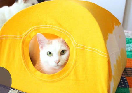 No-Sew-DIY-Cat-Tent_ExtraLarge700_ID-828326
