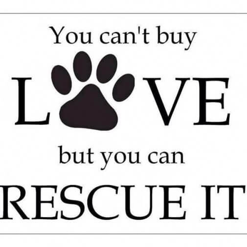 LoveRescue