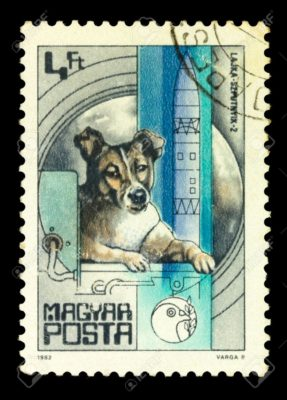11431169-MAGYAR-CIRCA-1982-A-stamp-printed-in-magyar-shows-first-dog-Laika-in-space-series-circa-1982-Stock-Photo