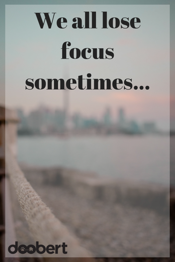 we all lose focus