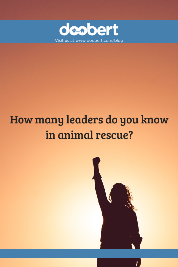 leaders in animal rescue