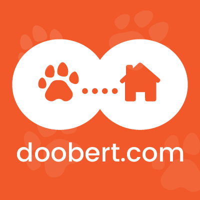 animal rescue doobert