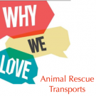 Addicted to rescue transport? Us too. 6 reasons we love rescue transports.