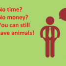 No time? No money? No problem! How you can save animals with a zero-dollar budget