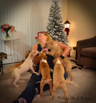 puppy kisses, Blue J Imagery