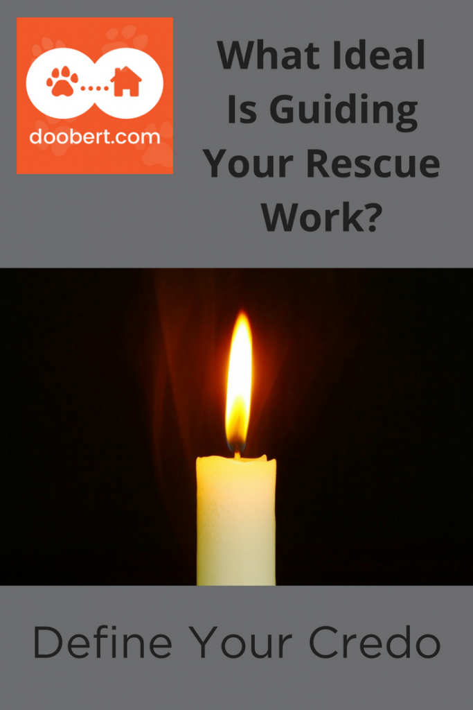 What Ideal Guides Your Rescue Work (picture - lit candle)