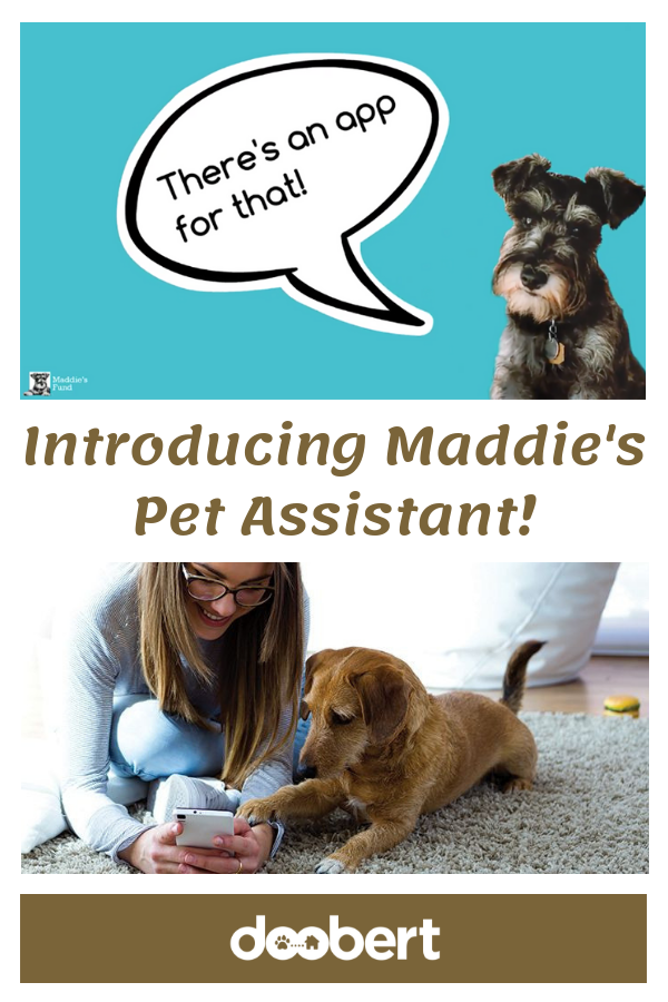 Maddie's Pet Assistant - MPA