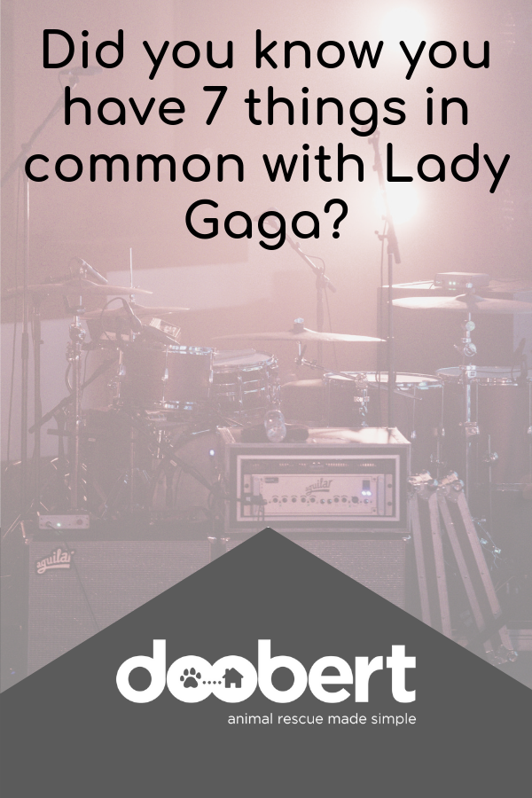 Did you know you have 7 things in common with Lady Gaga_
