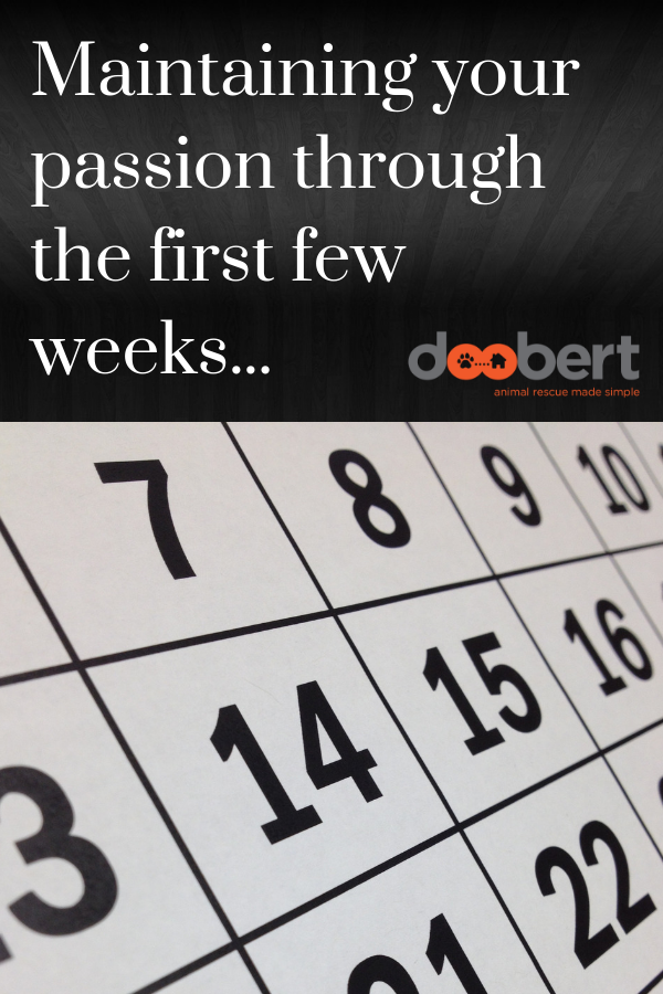 Maintaining your passion about fostering through the first few weeks.