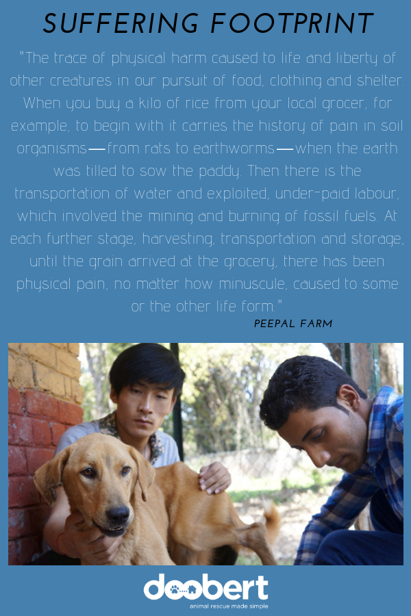 The Suffering Footprint - Peepal Farm