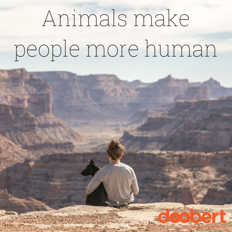 Animals make people more human