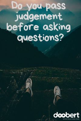 Do you pass judgement before asking questions_