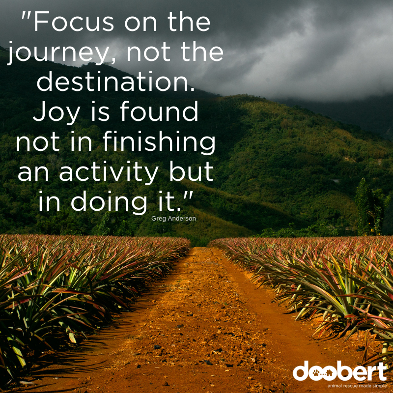 Focus on the journey, not the destination. Joy is found not in finishing an activity but in doing it.