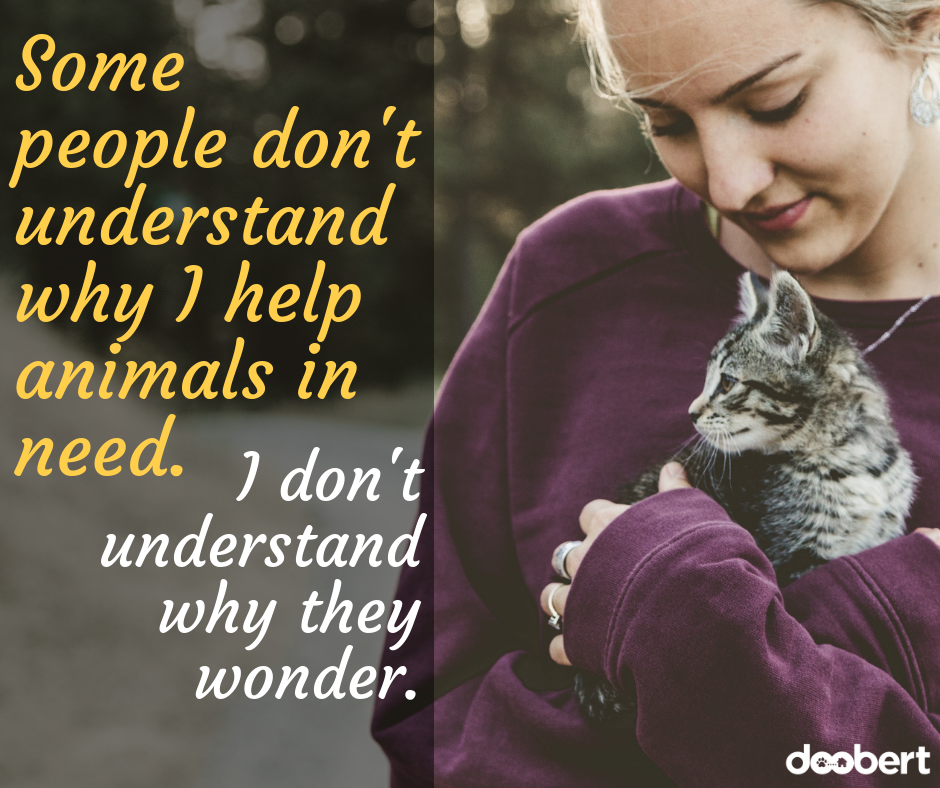 Some people don't understand why I help animals in need. I don't understand why they wonder.