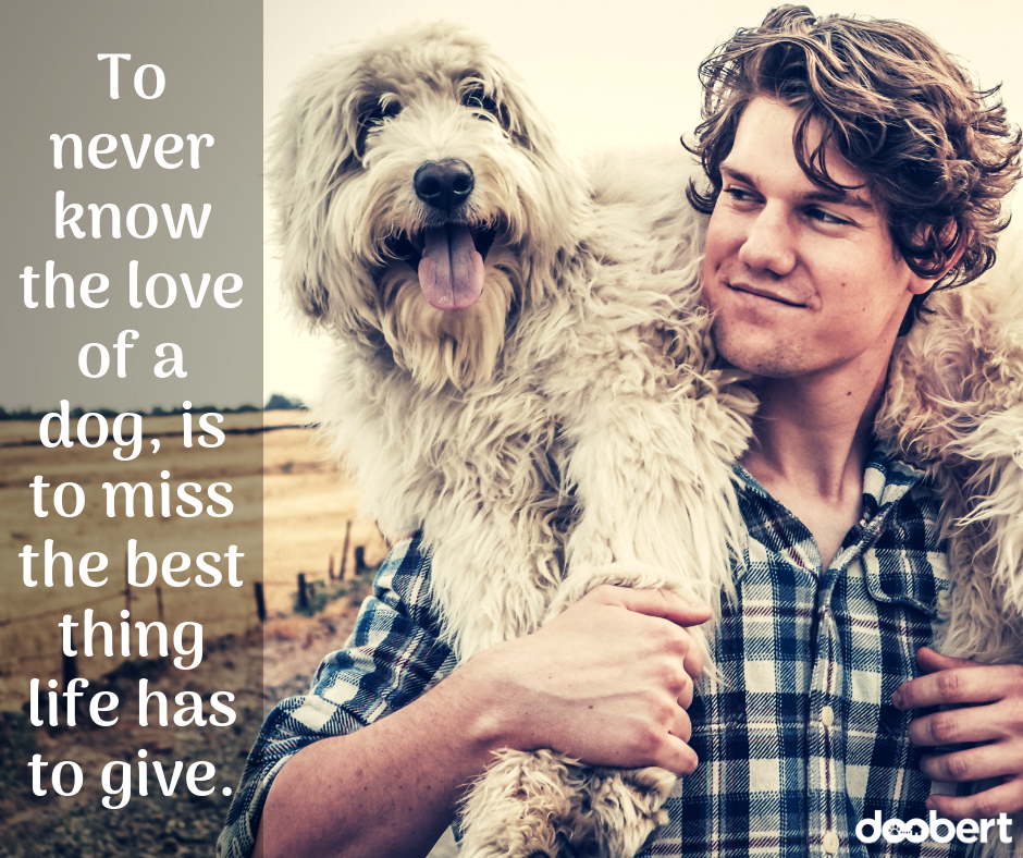To never know the love of a dog, is to miss the best thing life has to give. (1)