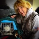 'Chatty Catty' & How to grab Cat Photos on a Transport.