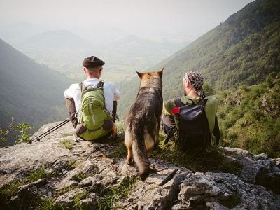 dog hiking