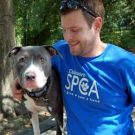 4 Reasons Volunteering At An Animal Shelter Will Change Your Life