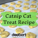Catnip Cat Treats
