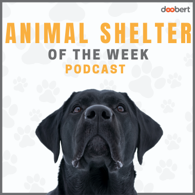 Cover Doobert Animal Shelter of the Week Podcast