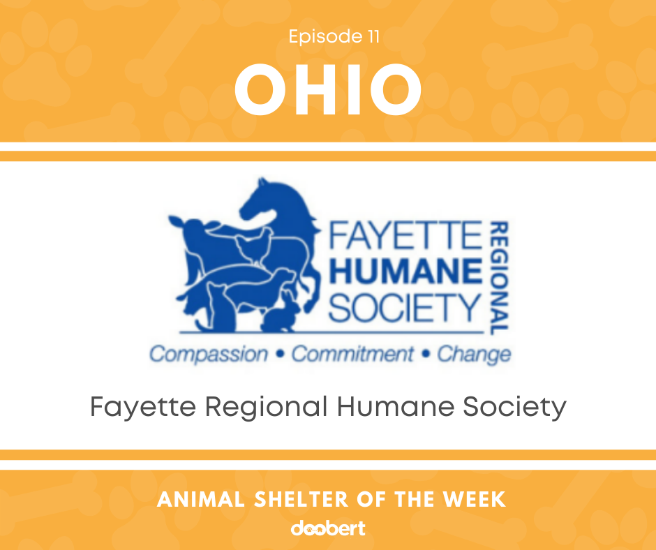 FB 11. Fayette Regional HS_Shelter of the Week