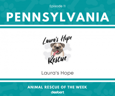 FB 11. Laura's Hope_Animal Rescue of the Week