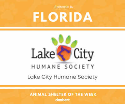 FB 14. Lake City Humane Society_Animal Shelter of the Week