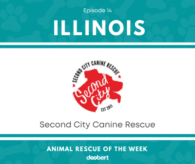 FB 14. Second City Canine Rescue_Animal Rescue of the Week