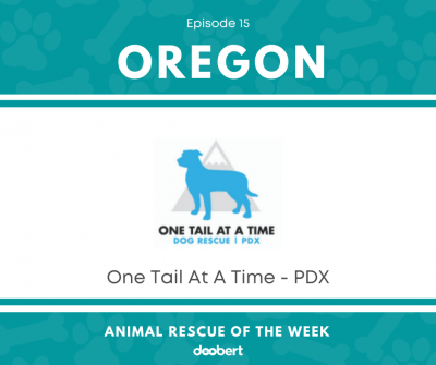 FB 15. One Tail At A Time PDX_Animal Rescue of the Week