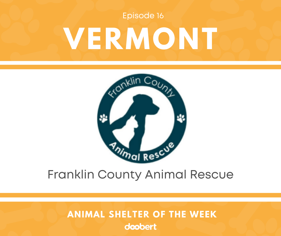 FB 16. Franklin County Animal Rescue_Animal Shelter of the Week