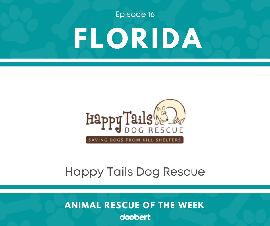 FB 16. Happy Tails Dog Rescue_Animal Rescue of the Week
