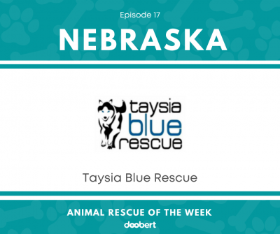 FB 17. Taysia Blue Rescue_Animal Rescue of the Week