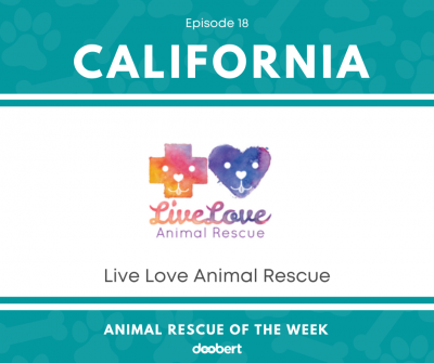 FB 18. Live Love Animal Rescue_Animal Rescue of the Week