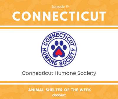 FB 19. Connecticut Humane Society_Animal Shelter of the Week