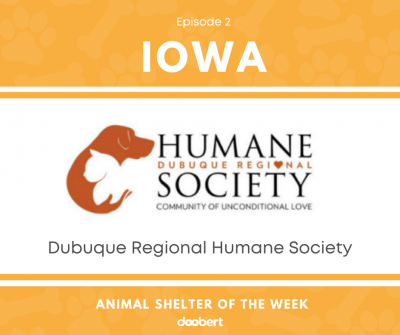 FB 2. Dubuque Regional Humane Society_Shelter of the Week